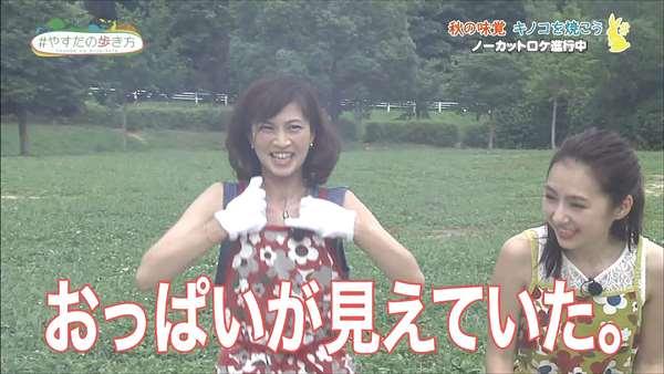 安田美沙子 エロ画像